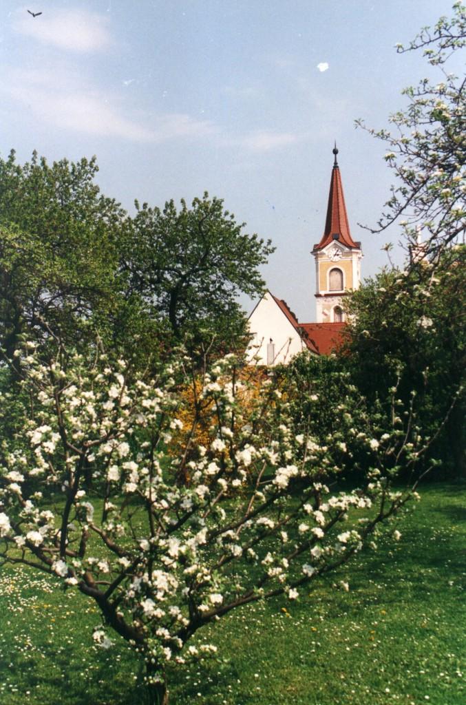 23_Altes RathausSommer
